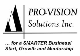 Pro-Vision Solutions Inc.
